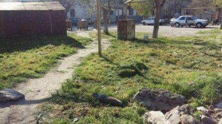 Sumqayıtda top mərmisi tapıldı