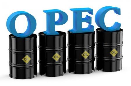 OPEC: Azərbaycanın 7 milyard barrel təsdiqlənmiş neft ehtiyatı var