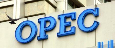 2019-cu ildə OPEC+ sammiti Bakıda keçiriləcək