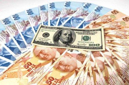 Dolların məzənnəsi 7,21 türk lirəsinə yüksəldi