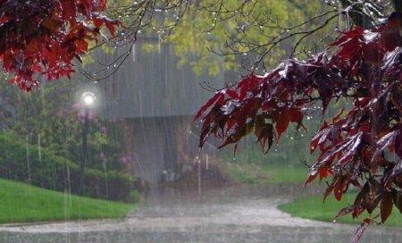 Sabahdan hava dəyişir: külək, şimşək, yağış, leysan...