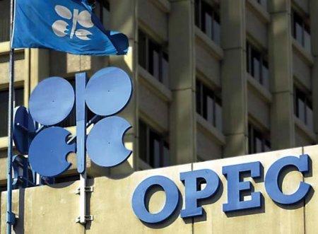 OPEC Azərbaycan üzrə proqnozunu açıqladı