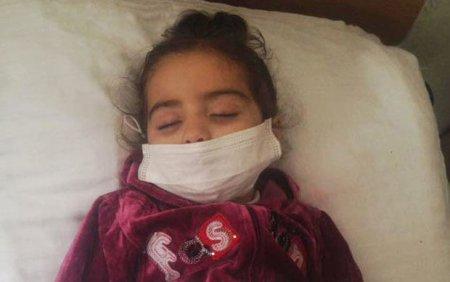 Üç yaşlı Aylinin müalicəsi üçün yığılan pul oğurlandı