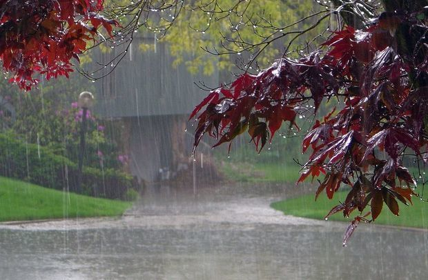 Bakıda yağış, rayonlarda sulu qar yağacaq
